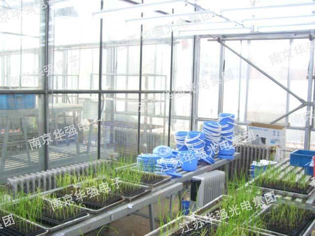 与高校合作现场2-植物生长灯